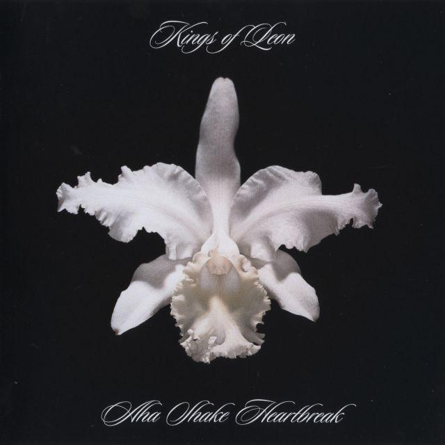 Kings of Leon - Aha Shake Heartbreak (2004)
