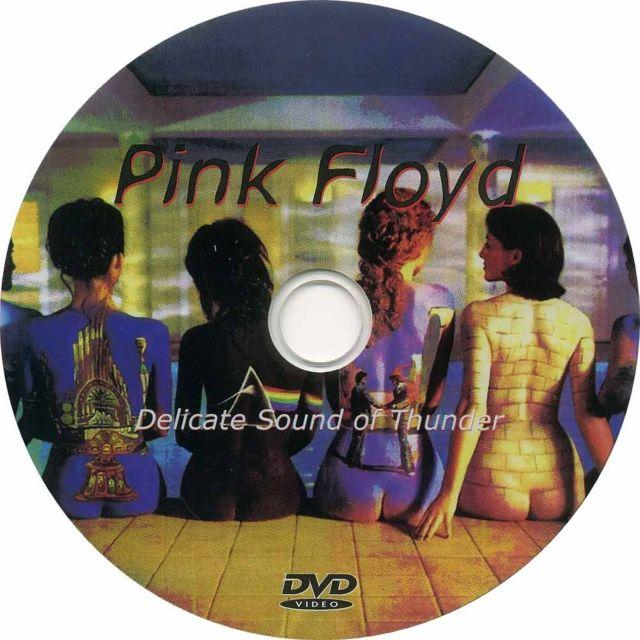 Delicate sound of thunder  pink floyd слушать