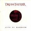 Live at Budokan (2004)