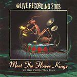 Meet the Flower Kings (2003)
