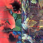 Дискография The Flower Kings
