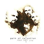 Pain of Salvation - Road Salt One (2010)