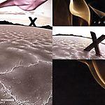X (2010)